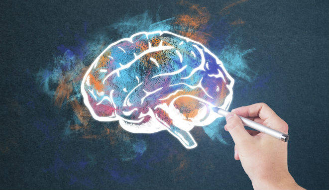 cerebro en neuromarketing