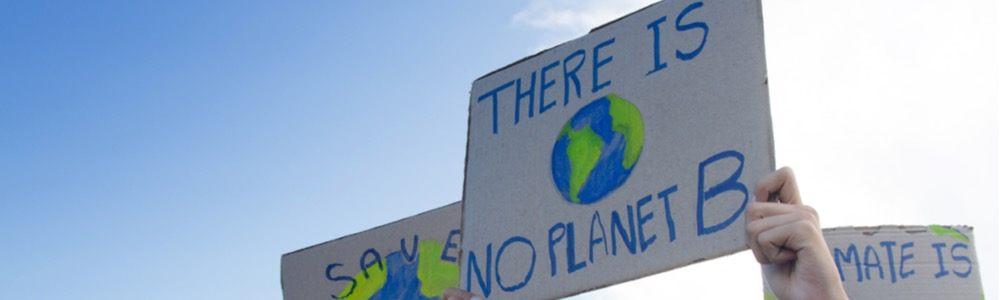 desarrollo sostenibilidad ecologismo